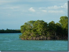 Drowned Cay