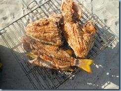 Herlicher Grillfisch